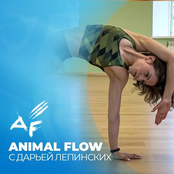 Animal flow. Тренировки в Екатеринбурге. ФИтнес-клуб Зарядка