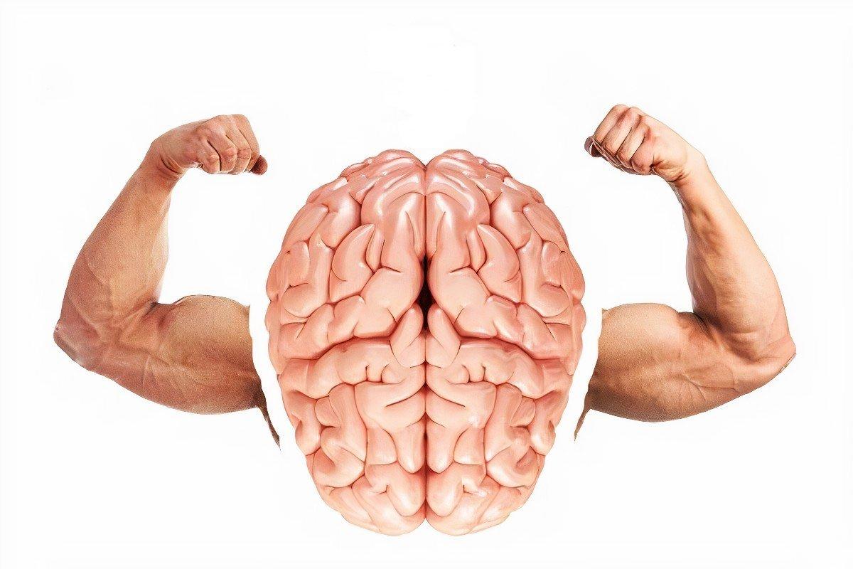 ментальная связь мозга и мышц